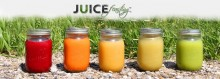 The-juice-feasting-nutrition-course-review